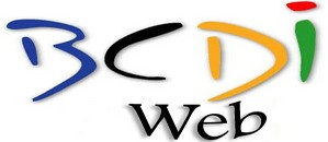 bcdi_web_logo