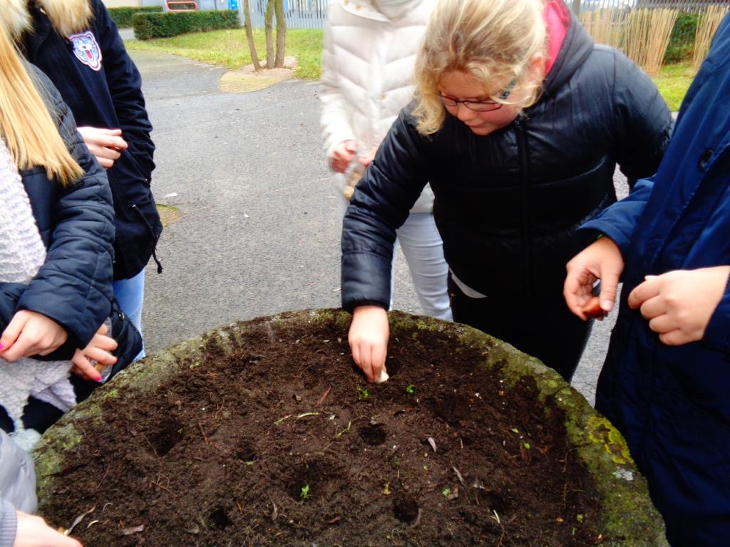 Projet jardinage flandre force et courage Jardinage en janvier